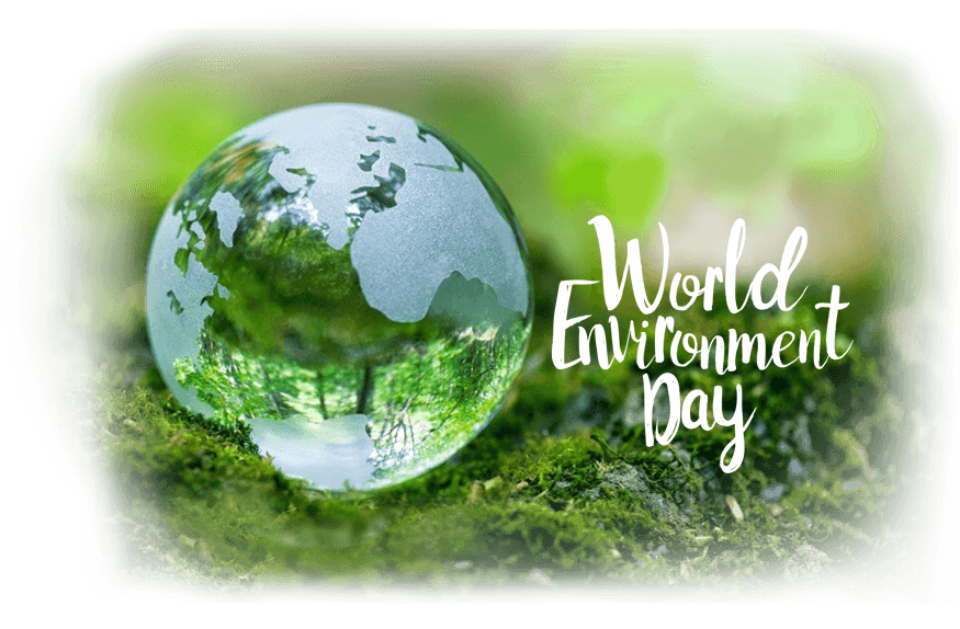 Happy World Environment Day 2017 news