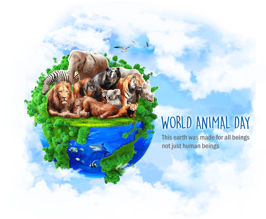 world animal day 2017