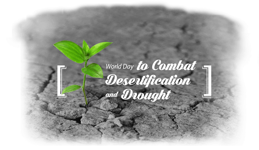 combatting desertification day news
